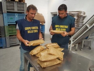Sicurezza agroalimentare, maxi sequestro di finta pasta made in Puglia.