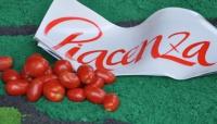 Anche il Consorzio di Bonifica interviene al Tomato World