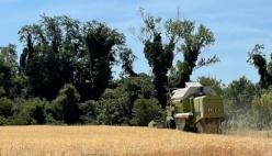 Agricoltura, Psr 2021-22 con +35% di Risorse (408 Mln)