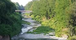Emilia Centrale, nel Crostolo 40 mila metri cubi di acqua in 40 ore per la salubrità dell'alveo