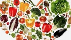 Come sfruttare al meglio le tecnologie e i social media: ciclo di webinar gratuiti dedicati al settore alimentare, ristorazione e turismo