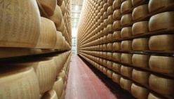Buone notizie: gli USA non aumentano i dazi del 25% sui prodotti europei:  Il commento del presidente Nicola Bertinelli