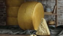 Parmigiano Reggiano: nuovo partner di Jeune Restaurateur D'europe
