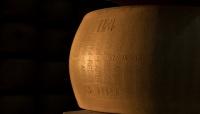 Forme 2021: il Consorzio del Parmigiano Reggiano protagonista della rassegna dio promozione del comparto lattiero-caseario italiano