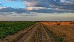 Agroalimentare: oltre 34 milioni di euro di prestiti agevolati per sostenere i piani di sviluppo aziendali