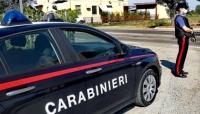 """Carabinieri, la """"bassa"""" passata come il riso. L'intensa attività di controllo dell'""""arma"""""""