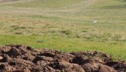 Consumo di suolo: dai dati ufficiali il Comune di Parma secondo in regione con 61 km2
