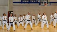 Da tutta l'Emilia-Romagna al Bolognese per un pomeriggio di Karate