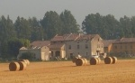 Fallibilità Agricola