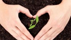 """Giornata Mondiale dell'Alimentazione: """"Amiamo la terra. Difendiamo il futuro"""""""