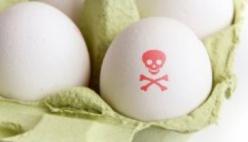 Uova contaminate, aumenta il numero dei richiami - i lotti